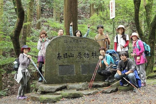 奈良春日山原始林_まるこノルディックウォーキング