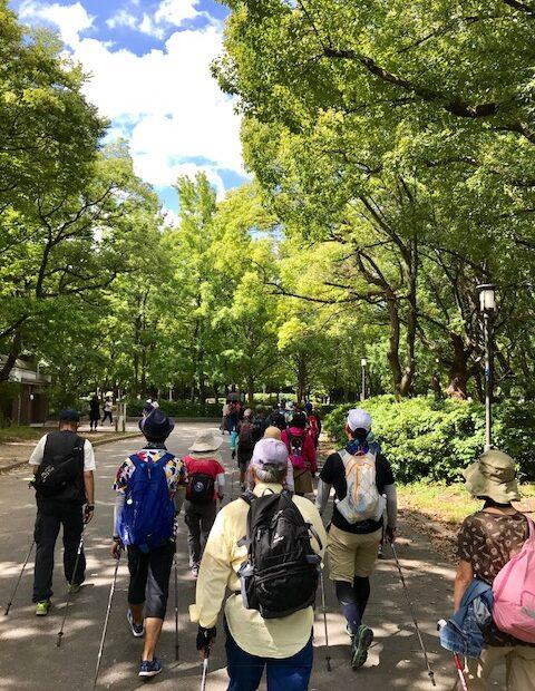 サークルアウリンコ大阪城公園 夏