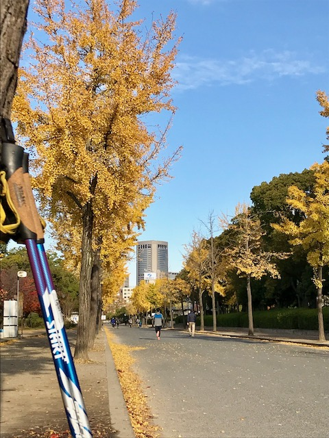 アウリンコ大阪城公園2017.11.25