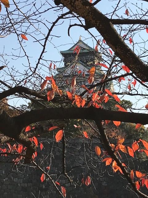 2017秋から冬へ 大阪城