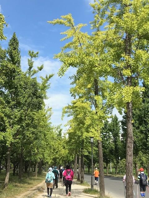 サークルアウリンコ大阪城公園