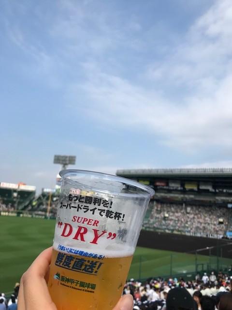 第100回全国高等学校野球選手権記念大会 甲子園