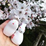 3月31日春だ☆まるこde宇治を満喫ノルディックウォーキング