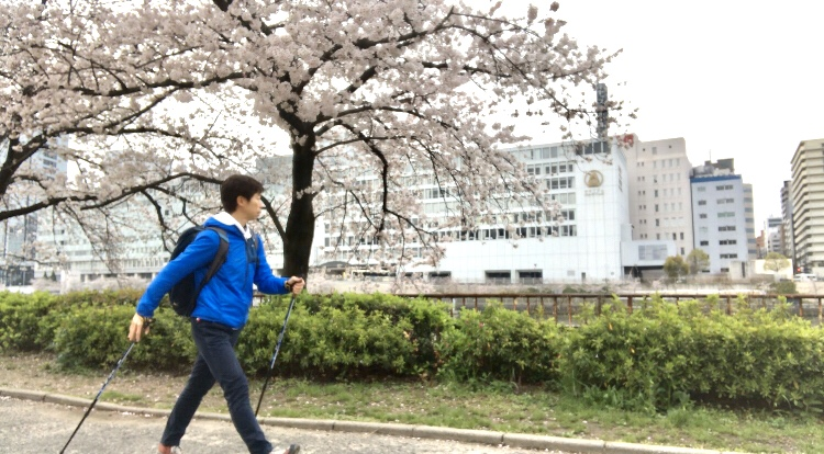 2020桜ソロノル