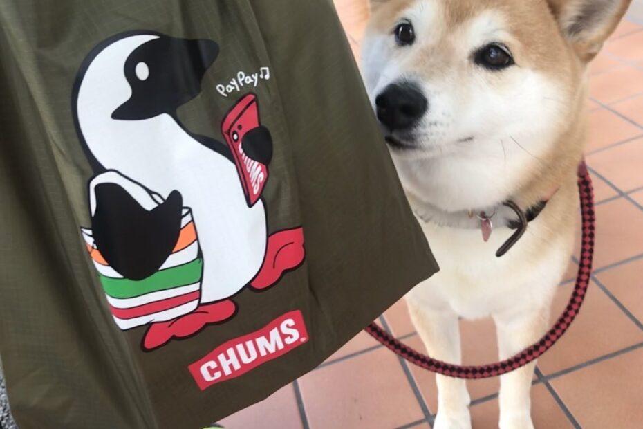 セブンイレブン CHUMSエコバッグ