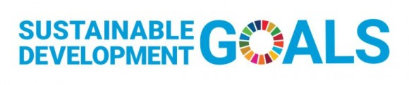 チームまるこノルディックウォーキングは持続可能な開発目標(SDGs)を支援しています。